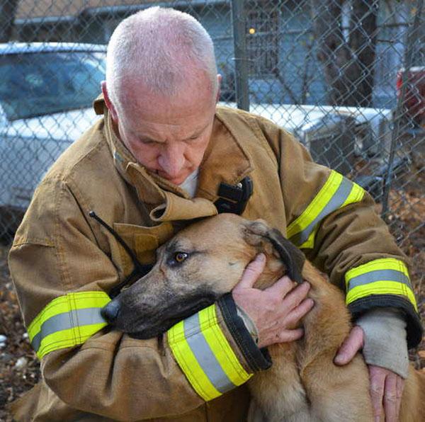 Strażacy ratujący zwierzęta - Joe Monster