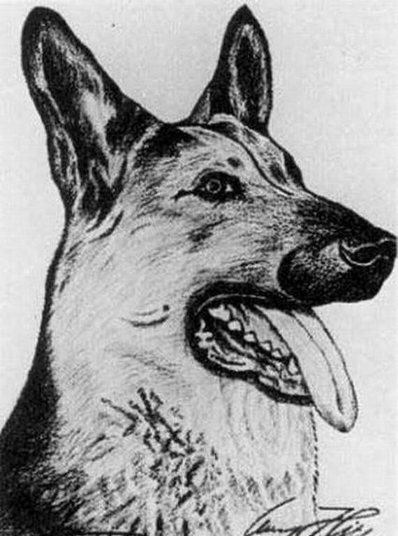 Obrazy Adolfa Hitlera Joe Monster