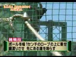 Z kijem urodzony i inne japońskie cuda