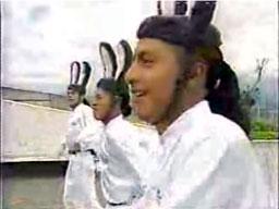 Tańczące króliki