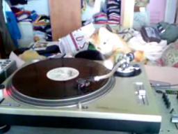 Kot DJ