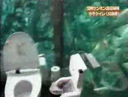 Niesamowita japońska toaleta