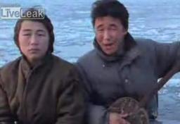 Piosenka Eskimosów