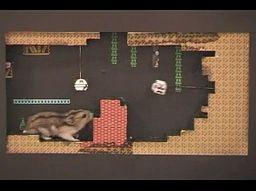 Chomik uwięziony w grze komputerowej