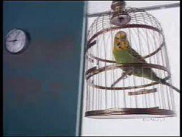 Reklama DHL z 1992 roku