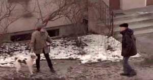 Dziadek kara za niesprzątanie po swoim psie
