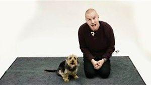 Jak psy reagują na szczekającego człowieka?