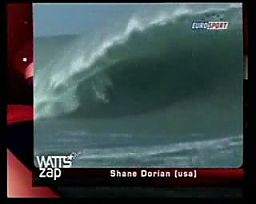 Watts Zap 8