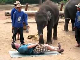 Masaż słonia
