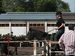 Cycata na koniu
