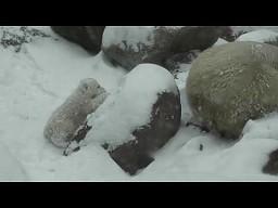 Pierwszy dzień na śniegu