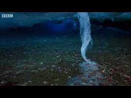 Śmiertelny lodowy dotyk
