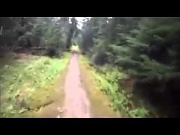 Przestraszony biegacz