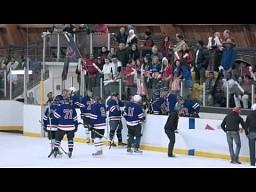 Nieoczekiwani fani na meczu hokeja