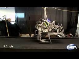 Najszybszy robot kroczący