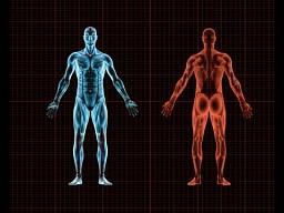 10 bezużytecznych części ludzkiego ciała