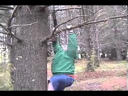 Wspinacz gałęziowy