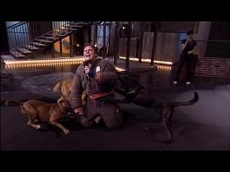 Killer Karaoke - Wściekłe psy