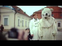 Białe niedźwiedzie na Podlasiu