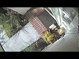 Kurier UPS kradnie paczkę