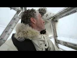 Bliskie spotkanie z misiem polarnym