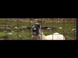Taylor Swift - I Knew You Were Trouble Goat Edition