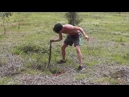 Polowanie na króliki metodą australijską