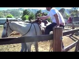 Mistrzowskie wsiadanie na konia