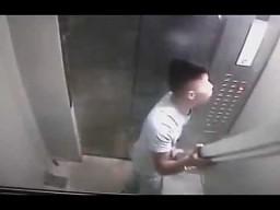 Chińczyk pakuje się do windy...