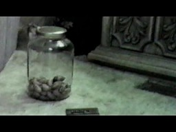 Bardzo sprytna mysz