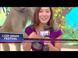 Wpadki na antenie - wrzesień 2013