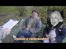 Referendum - Warszawa od drugiej strony
