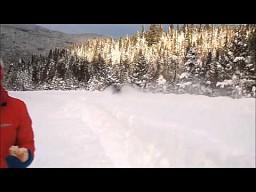 Łoś przecinający zaspy śnieżne