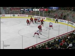 Obrona roku w NHL