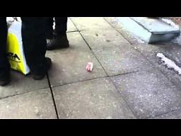 Nietypowy przypadek na ulicy