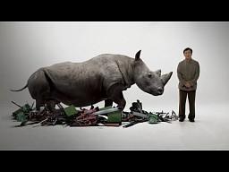Jackie Chan wspiera nosorożce