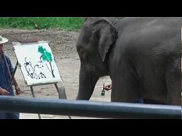 Słoń maluje słonia