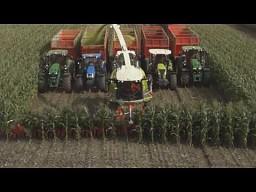 Zbiór kukurydzy kombajnem z 20 rzędową przystawką