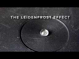 Zjawisko Leidenfrosta