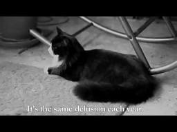 Henri, egzystencjalny kot