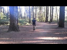 Szybka akcja w lesie