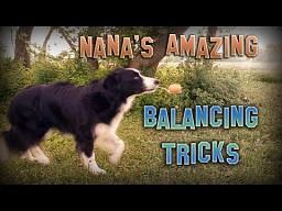 Nana i jej sztuczki