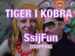 Tiger i Kobra hejtują pulsary!