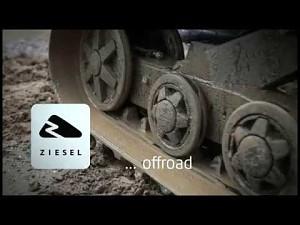 The Ziesel