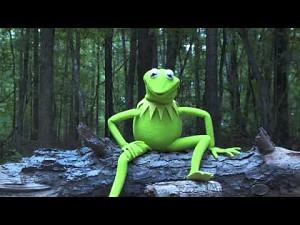 Kermit i wiadro zimnej wody [ALS]