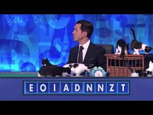 Jimmy Carr i kociaki
