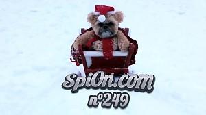 Le Zap de Spi0n n°249