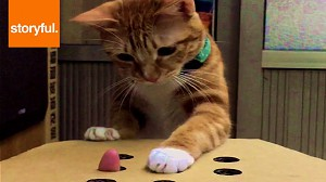 Prosta zabawka dla kota