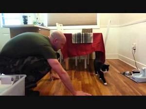 Reakcja kotów na widok swojego właściciela po powrocie z misji