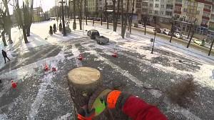 """Polski """"tree worker"""" - Gołdap"""
